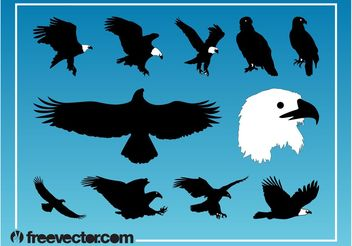 Eagles Vector Graphics - vector #157771 gratis