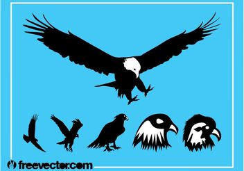 Eagles Silhouette Graphics - Free vector #157801
