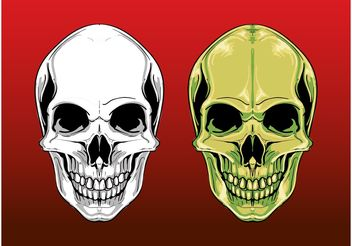 Scary Skull Graphics - Free vector #158681