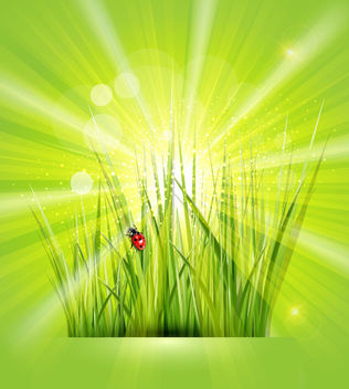 Shiny Green Background with Grasses - vector gratuit #166361