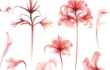 Delicate Spring Botanical Vectors - Free vector #170131