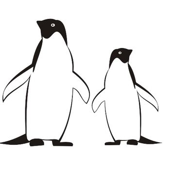 Line Traced Black & White Penguins - Free vector #173181