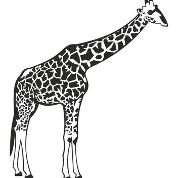Black & white Giraffe with Detail Body Print - vector gratuit #173301