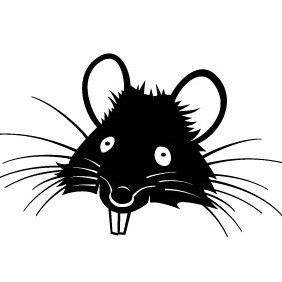 Rat Head - Free vector #175531