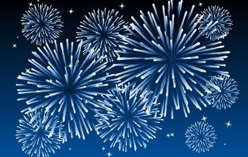 FIREWORKS 4 - Free vector #176601