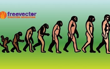 Evolution - vector gratuit #177391