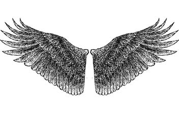 HandDrawn Wings - vector gratuit #177781