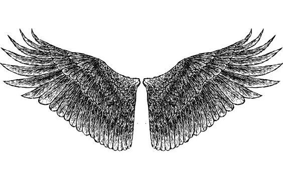 укладанні трудового психология ребенка рисунки крыльев подарок день