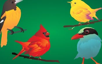 4 beautiful & detailed birds! - Free vector #178781