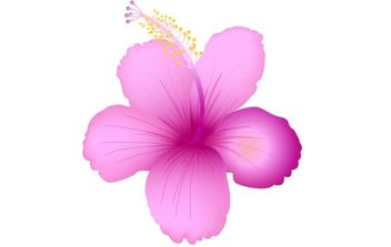 SummerFlower - vector gratuit #179241