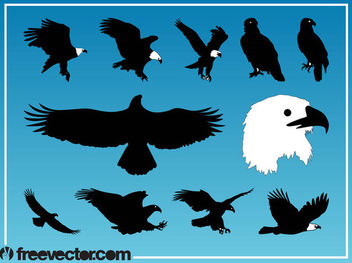 Silhouette Eagle Bird Pack - Free vector #181311