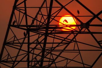 Birds on powerlines constructions - Free image #183561