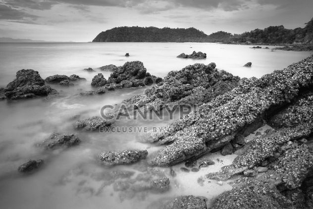 Landscape with stones in ocean, black and white - image #183921 gratis