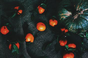Pumpkin and tangerines - Free image #184081