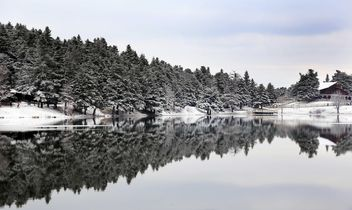 Pond in winter - image #185951 gratis