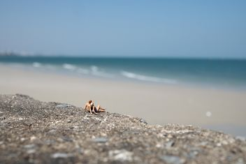 Miniature people on the beach - бесплатный image #187141