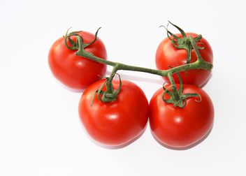 Tomatoes on branch - image gratuit #187811