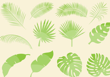 Tropical Leaf Vectors - Free vector #200201