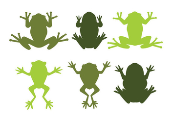 Green Tree Frog Vectors - vector gratuit #201241
