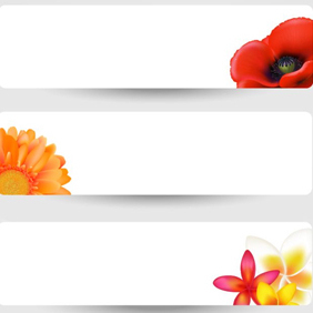 White Floral Banners - Free vector #203541