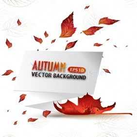Vector Autumn Backround With Paper Speech Bubble - Kostenloses vector #204471