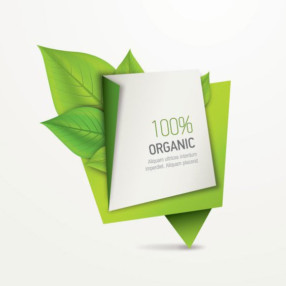 Organic Paper Banner - Free vector #205321