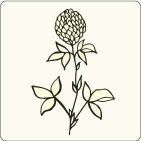 Floral 100 - Free vector #206081
