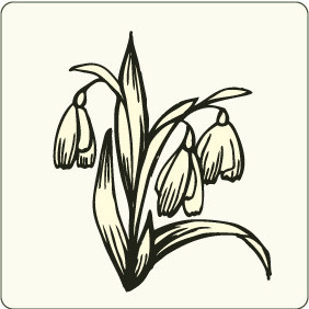 Floral 83 - Free vector #206531