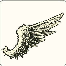 Wing 9 - Free vector #207481