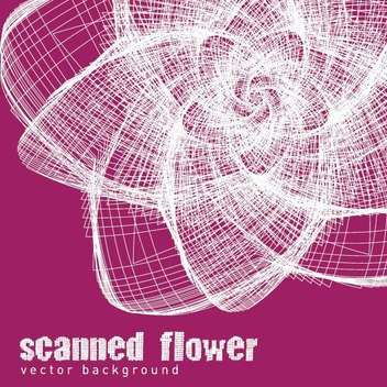 Scanned Flower - vector gratuit #209241