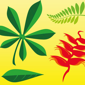 Plant Leaves - Free vector #214461