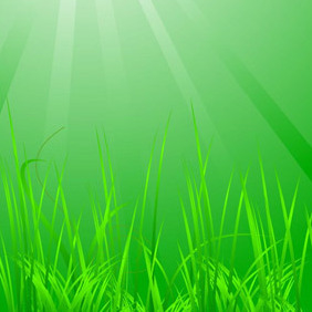 Cool Green Grass - vector gratuit #217621