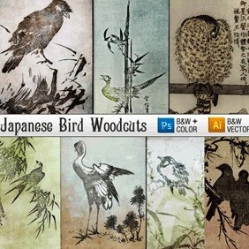 Japanese Woodcut Engravings Of Birds - vector #218031 gratis