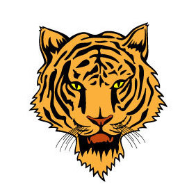 Tiger Head Vector - Free vector #219681