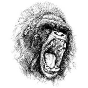 Vector Ape Illustration - Free vector #223401