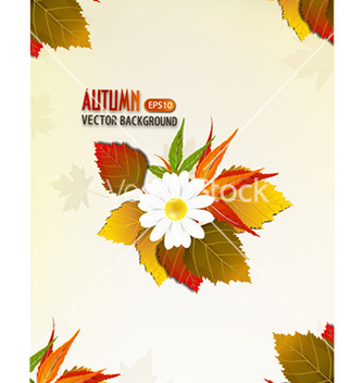 Free autumn background vector - vector #224911 gratis