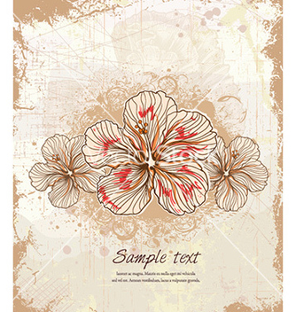 Free vintage floral background vector - Free vector #226081