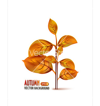 Free print vector - Free vector #228091