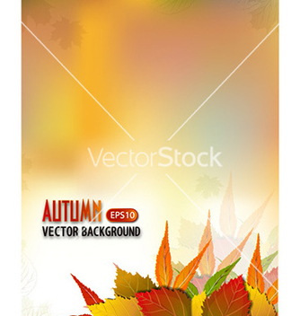 Free autumn background vector - vector #228161 gratis