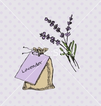 Free health and nature collection lavender vector - Kostenloses vector #236011