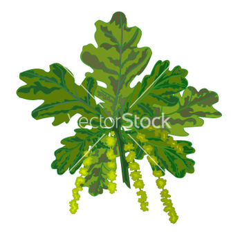 Free oak branch vector - Free vector #237161