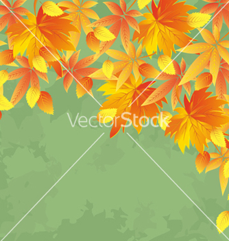 Free vintage autumn background leaf fall vector - Free vector #239771