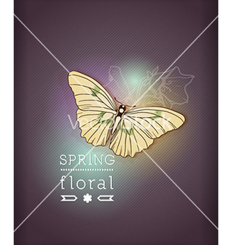 Free floral background vector - Free vector #240101