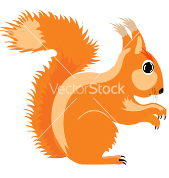 Free squirrel vector - vector #242461 gratis