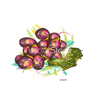 Free grapes with colorful splashes vector - Kostenloses vector #243231