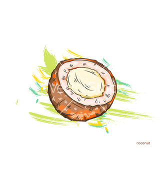 Free coconut with colorful splashes vector - vector gratuit #243341