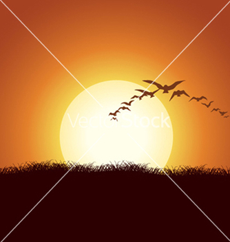 Free flock of birds vector - vector gratuit #257881