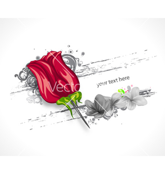 Free rose with grunge vector - бесплатный vector #258801