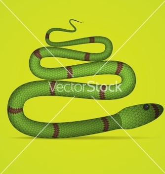 Free green snake vector - Free vector #266771