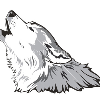 Free wolf head vector - Free vector #267721